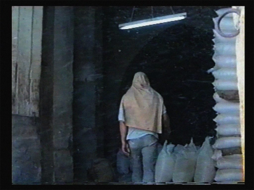 Ammar al-Beik_Light Harvest_1